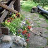 красиви идеи за цветята