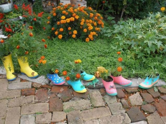 саксии от обувки
