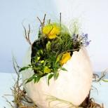композиция в яйце