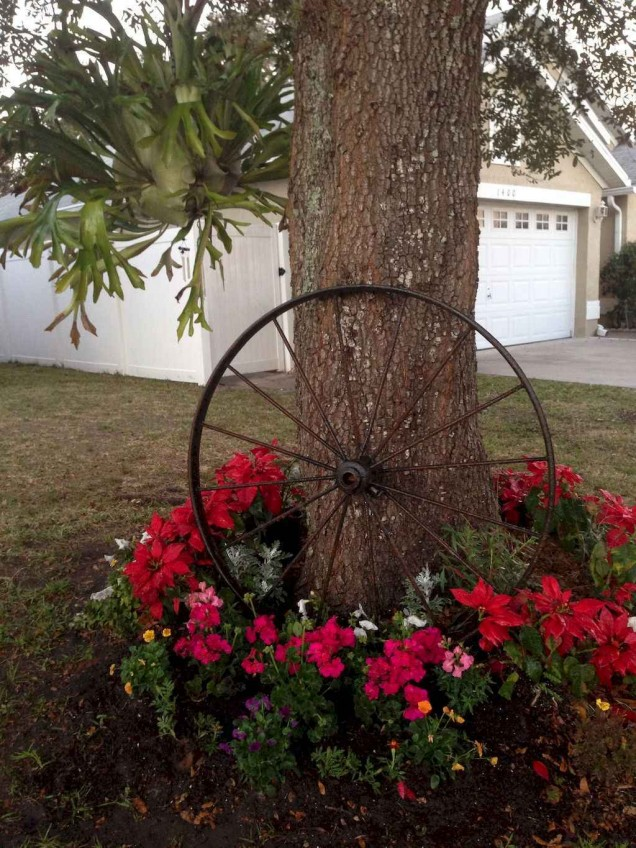 цветна идея за двора