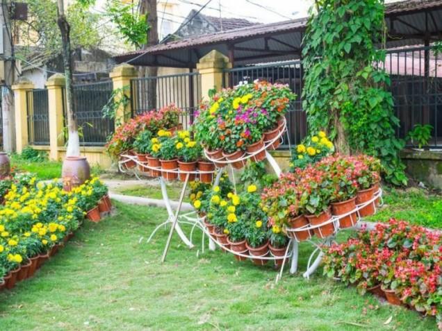 красив цветен двор