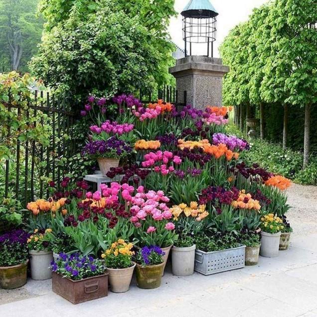 цветна композиция в двора