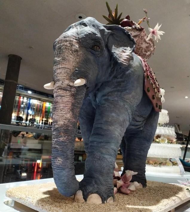 слон торта