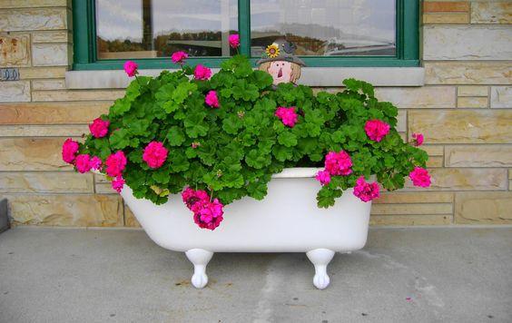 цветя във вана