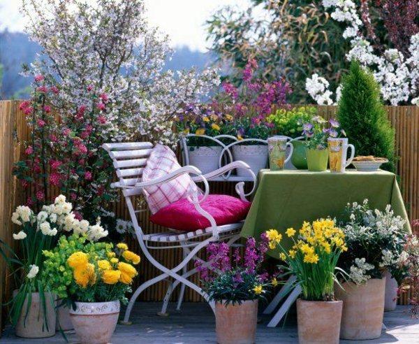 идеи градина на балкона