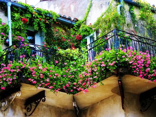 балкон отрупан с цветя