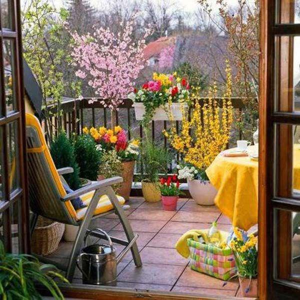 оазис на балкона