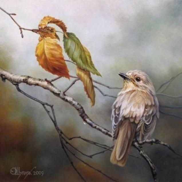 Две малки птици