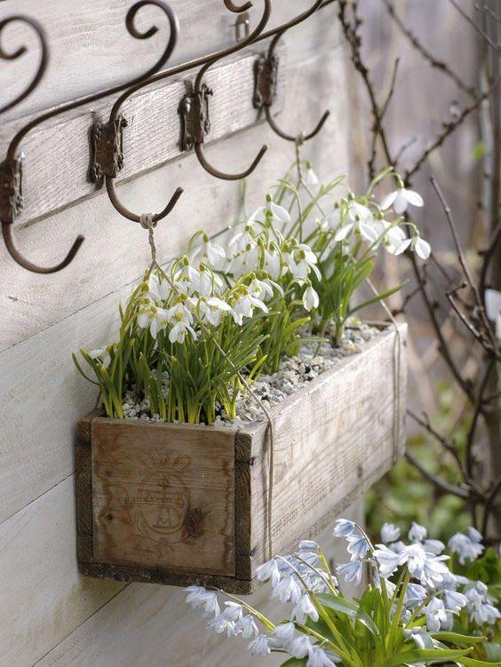 идеи за украса на двора