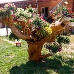 цветарник от старо дърво