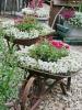 цветарник в градинска количка