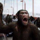 11. Възходът на Планетата на маймуните