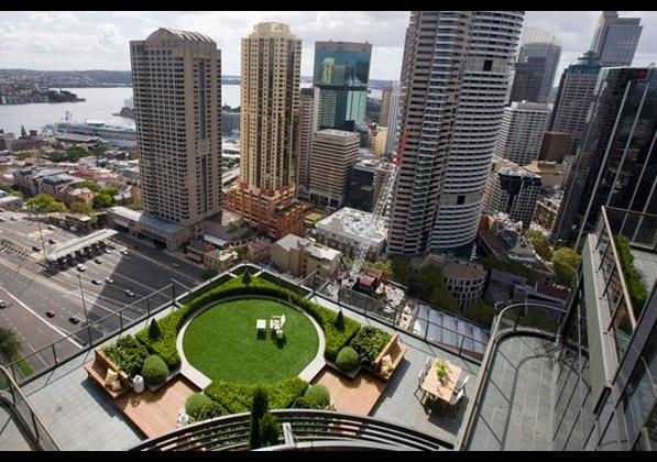 уникална градина на покрива сред небостъргачи 1
