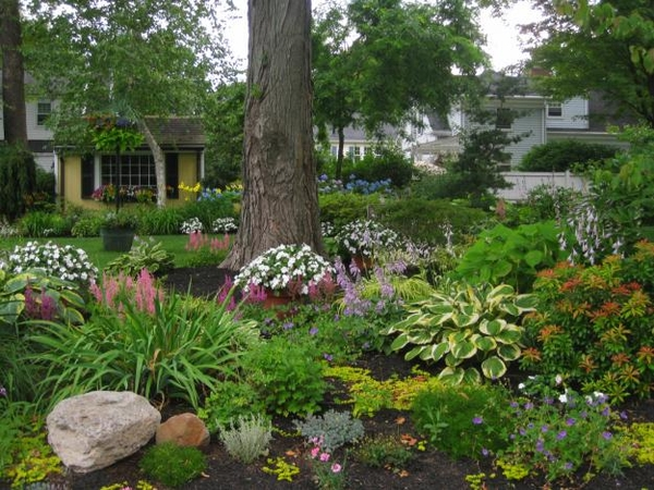 Декориране на двора с малки храстчета