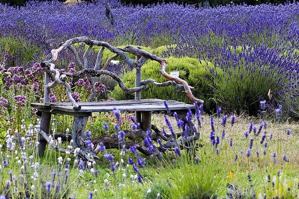 Уникална градинска пейка