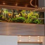 Вила с аквариум - два големи аквариума на второто ниво