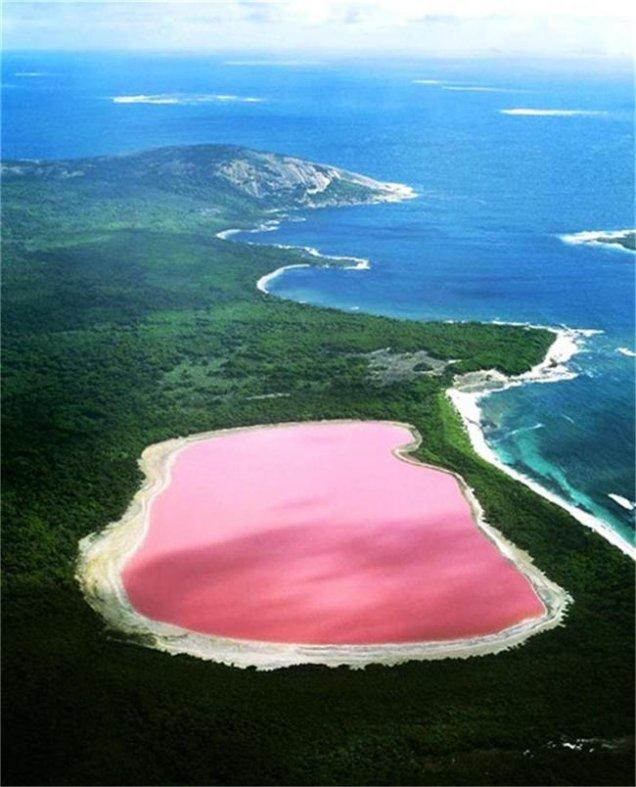 розовото езеро