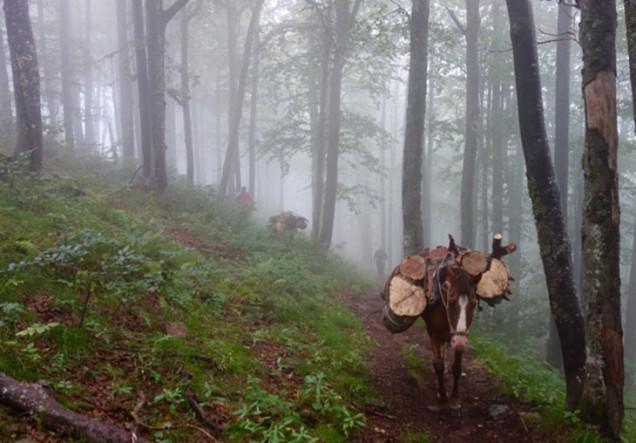 Снимки от България 7