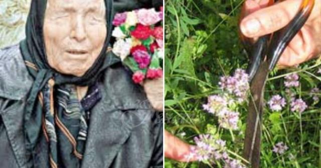 Рецепта на баба ванга за артрит